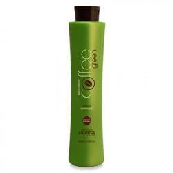 Активный био-протеиновый состав Honma Coffee Green 500 мл